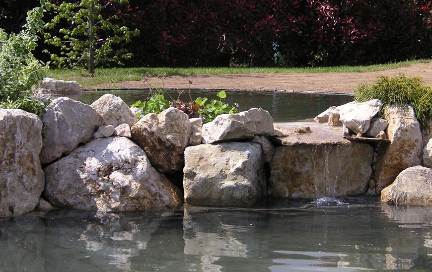 bassin-ornement-10