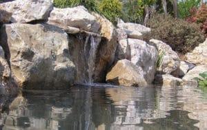 bassin-ornement-9